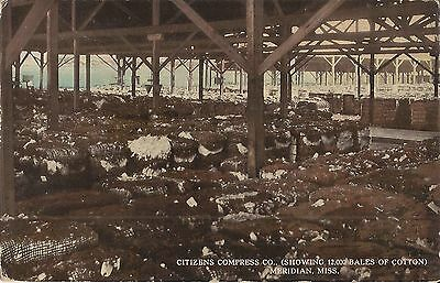 Citizens Compress Company - Meridian, MISSISSIPPI - 1912 - cotton bales
