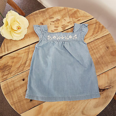 Baby Toddler Girl Embroidered Frill Sleeve Chambray Top Summer Size 0 9 Months