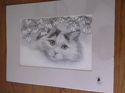 Matted Unframed Cat w/Green Eyes 12 X 9 Charcoal by Virginia Miller
