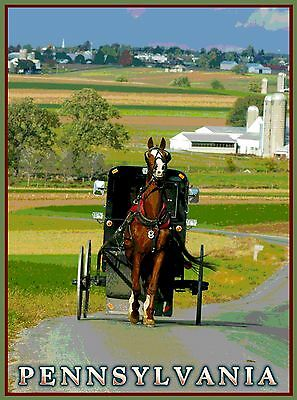 Amish Country Horse Pennsylvania United States  Travel Advertisement Poster