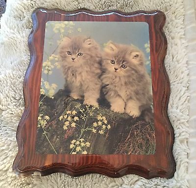 Kitten Wooden Picture Cat Wall Hanging Fluffy Cat Picture
