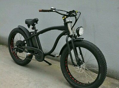 Dollarstar - Dolo Electric Bicycle