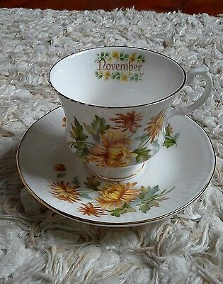Elizabethan Staffordshire China Cup and Saucer Month of November