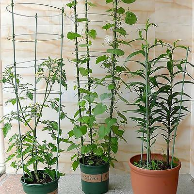 Plant Support Green Vines Rack Flower Growing Climbing Stick Garden Tools