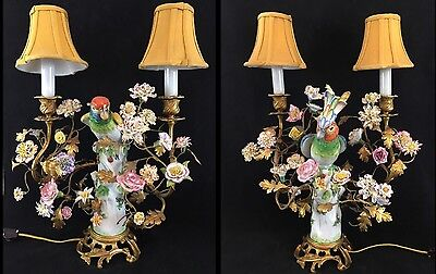 Pair of French/ German Porcelain Parrot Lamps 19th Century, After Meissen