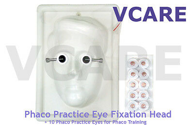 1 Phaco Practice Eye Fixation Head + 10 Phaco Practice Eyes for Phaco Training