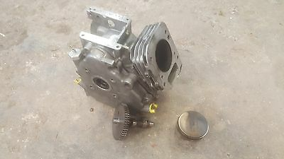 Briggs and Stratton Animal racing cylinder crankcase and parts