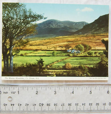 old postcard Mourne Mountains, Co. Down, N.I.