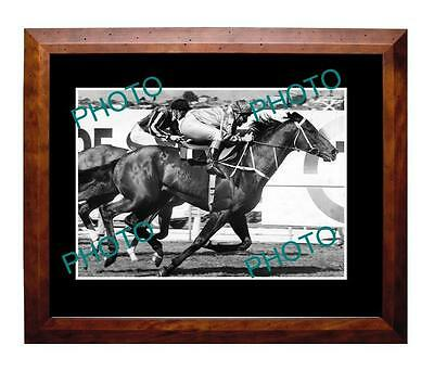 Kingston Town 1982 Cox Plate Win Large A3 Photo