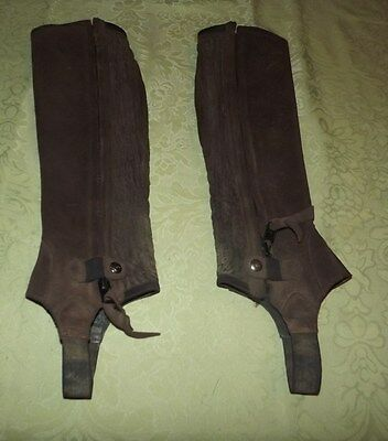 ariat brown leather half chaps