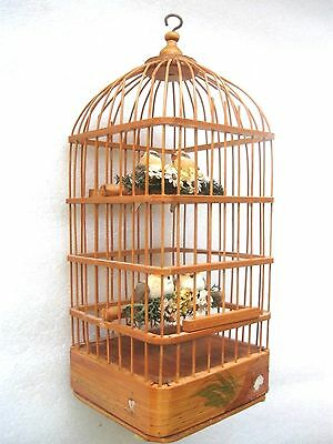 CHIRPING  4 BIRDS IN CANE CAGE  hanging roof HOOK  Realistic