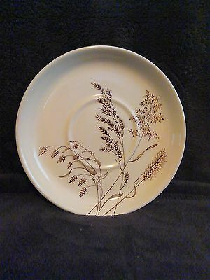 J & G Meakin England Saucer Windswept Pattern Brown