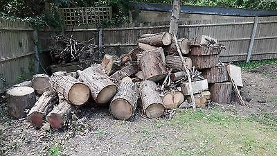 Free Fire Wood For Collection