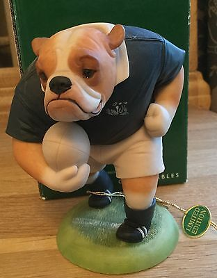 Bulldog Scotland Rugby Limited Edition Figurine By Robert Harrop - Doggie People