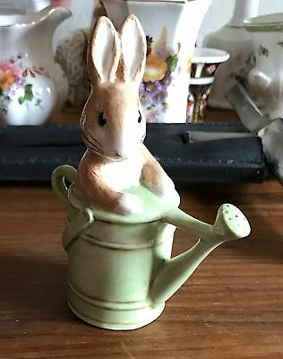 Beswick Beatrix Potter Figure 'Peter In The Watering Can'