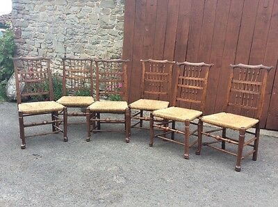 6 Antique georgian ashwood spindle back rush seated dining chairs.
