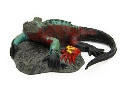 Japan Colorata Marine Iguana Lizard Reptile Animal PVC Figurine