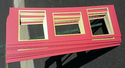 TEN (10) Lot 12x36 Collage picture matting for 3- 8x10's (USC Trojans, SF 49ers)