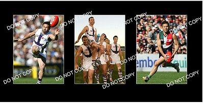 PETER BELL FREMANTLE DOCKERS GREAT 3 8x6 LARGE PHOTOS