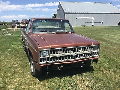 1980 Chevrolet C/K Pickup 1500  1980 81 chevy truck  custom deluxe 10 short box rat rod