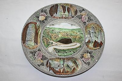 Vintage Carlsbad Caverns White's City NM Curio Shop Souvenir Plate Staffordshire