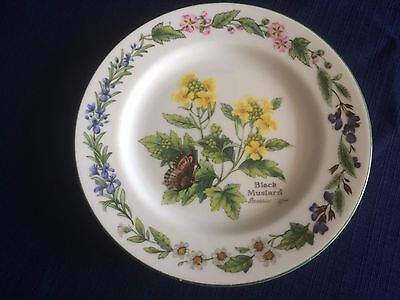 "Royal Worcester Worcester herbs 6 5/8"" side plate (minor signs of wear)"