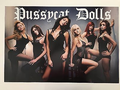 Pussycat Dolls,music Band, Authentic,2006 Poster