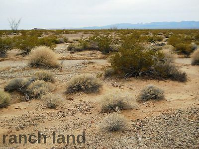 10 acre California land on public road, with several Cabins-Campers-Mobile Homes