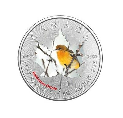 "5$ Kanada Silber Maple Leaf 2017 ""Canadian Birds"" Baltimore Oriole 1 OZ in Farbe"