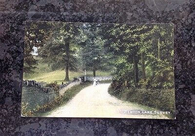 Edwardian Postcard Of Newton Lane Turvey