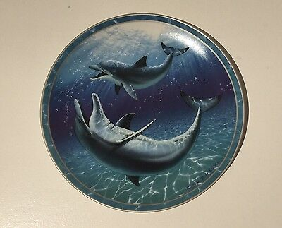 """""""An Underwater Playground"""" Porcelain Collectors Plate - The Bradford Exchange"""