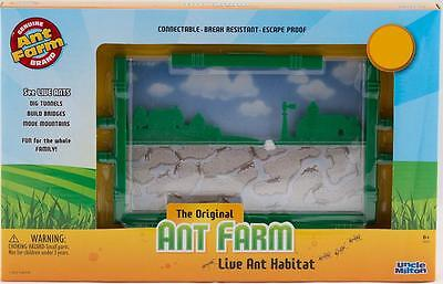 Ant Farm - Uncle Milton NEW