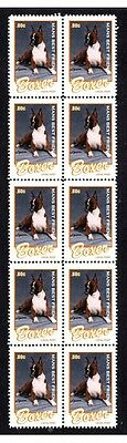 Boxer Dog Mans Best Friend Strip Of 10 Mint Stamps #5