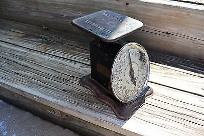 ANTIQUE VINTAGE PERFECTION The Original Slanting Scale 1906 24 LBS SCALE