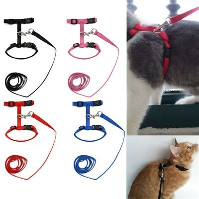AU Adjustable Pet Cat Nylon Harness Leash Kitten Halter Collar Belt Safety Strap