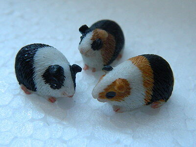(G25) Dolls House Resin Set Of Three Assorted Guinea Pigs