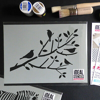 Birds On Branch Tree Stencil Reusable Home Wall Decor Paint Ideal Stencils Ltd