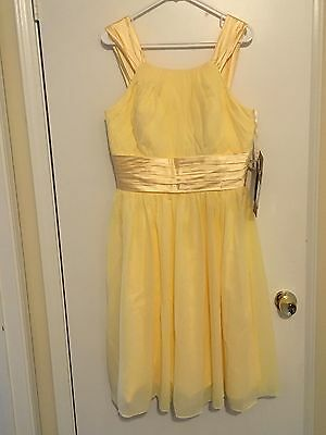 bridesmaid dresses, Beautiful Daffodil Color, Brand New with Tags, Size 14