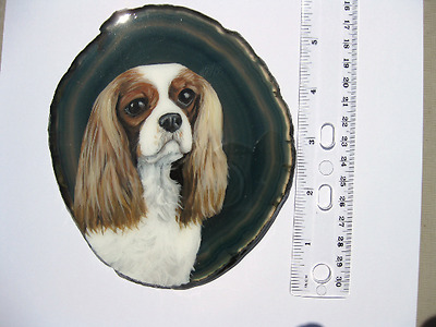 cavalier king charles spaniel on agate