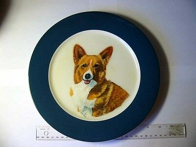 corgi painted on a plate