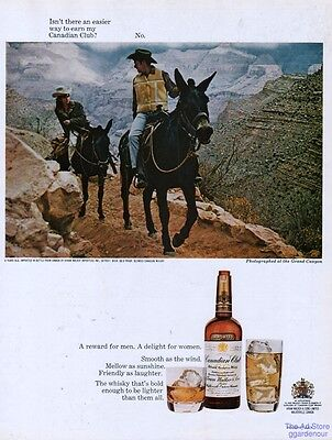 1968 Canadian Club Whisky Grand Canyon Mule Trail Ride Photo Home Bar Decor Ad