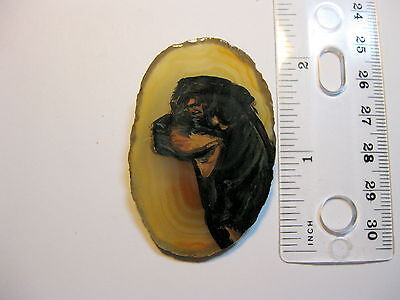 rottweiller dog brooch/pendant on agate