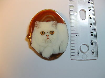 exotic cat brooch/pendant on agate