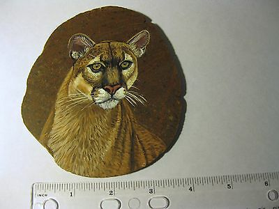 cougar/mountain lion painted on stone