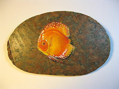 discus fish painted on stone
