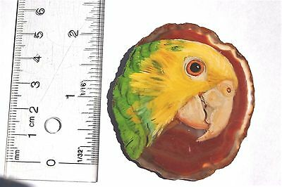 double yellow amazon parrot brooch/pendant on agate