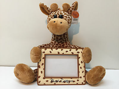 Bush Gardens Park Stuff Giraffe Animal Plush Photo Frame Kids Picture Nursery