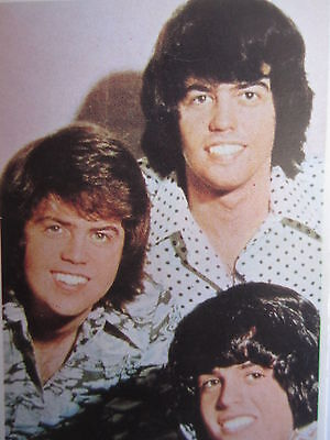 Osmond Brothers Vintage Trading Card Lot LDS Pop Rock Music Stars Donny 70s