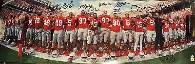 2014 Ohio State Buckeyes Team Signed Panoramic Double Certified