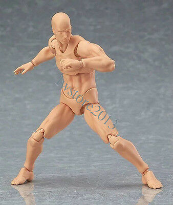 Figma 2.0 Male Muscular Body Action Figure W/ Head Man Collection Toys Gifts